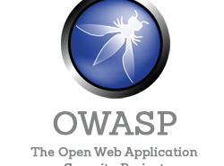 owasp interview question